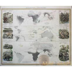 Zoological Geography Africa Australia Zoology Johnston 1856