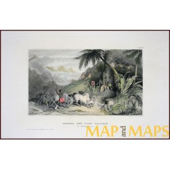 ANTIQUE PRINT, FORT DAUPHIN IN MADAGASCAR, (TAOLAGNARO) MEYERS 1850