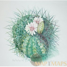 Cactus original signed screenprint limited edition German artist 1979