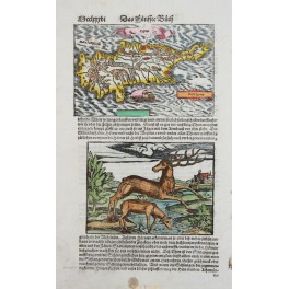 Kingdom Cyprus Antique woodcut map Münster 1578