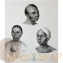ANTIQUE PRINT, NEGROES FROM VARIOUS TRIBES, NUDE TATTOO BY HONEGGER 1850