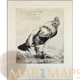Felix Bracquemond, Der Hahn The Rooster Photo engraving 1882