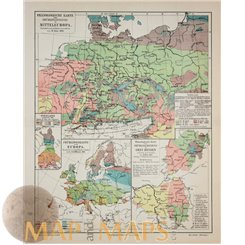 Phenological map of Europe Old map Meyer 1905