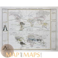BIRDS AND AMPHIBIA IN THE NEW WORLD, ATLAS MAP PERTHES 1851